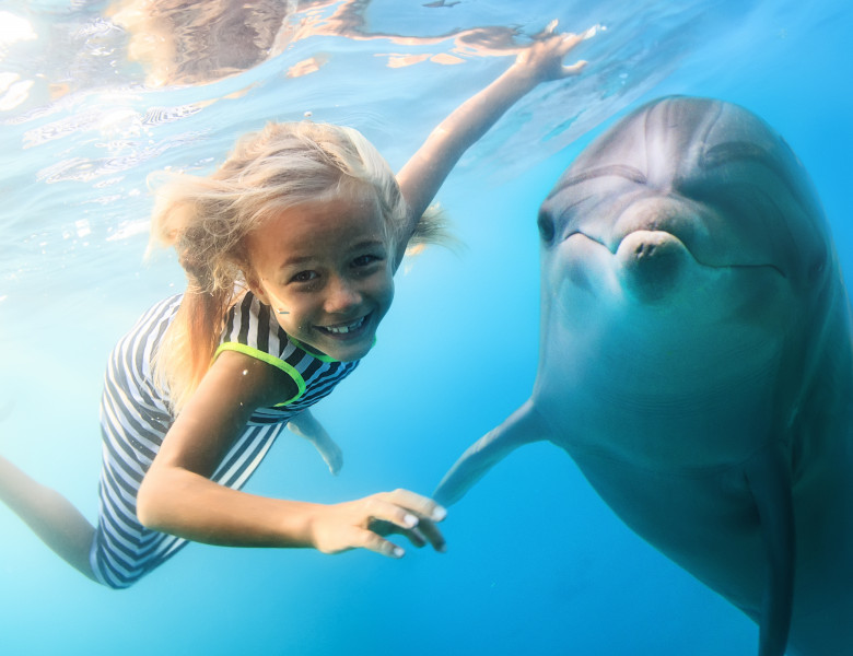 fetita si delfin