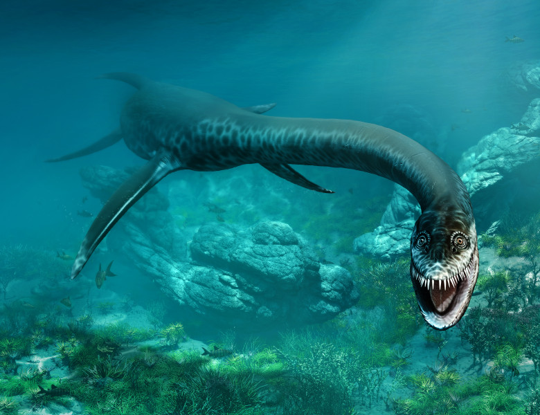 dinozaur disparut reptila marina preistorica dinozaur plesiosaur
