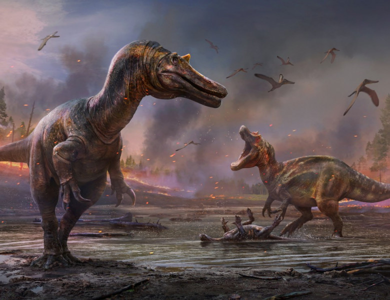 imagine dinozaur