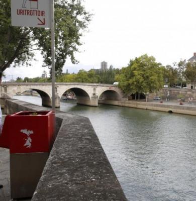 Pisoar expus în Paris
