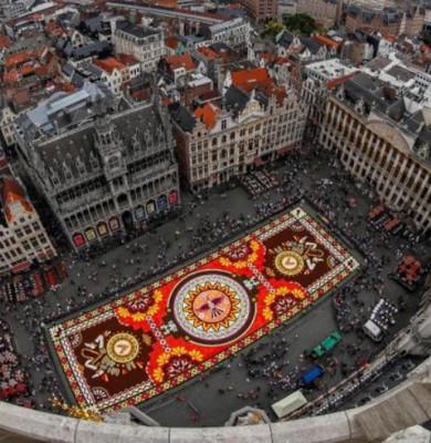 Covor de flori în Bruxelles