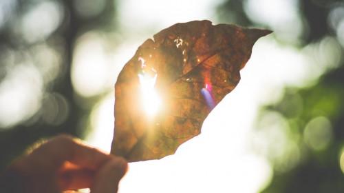 Toamnă călduroasă, caniculă în septembrie, soare