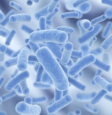 Studiu: Probioticele nu sunt pentru oricine, oricând și oricum