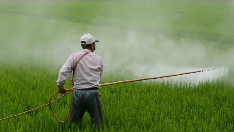 Erbicid, glifosat, dăunători, recoltă, agricol