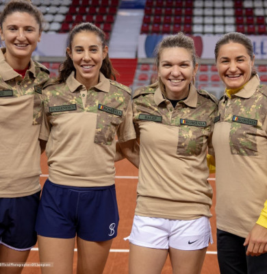 fed cup 2
