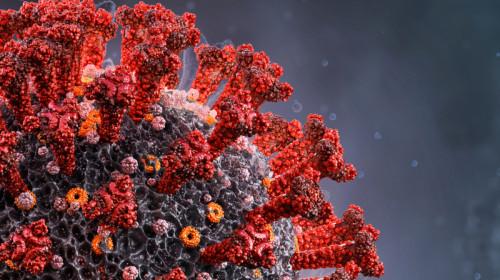 COVID-19, coronavirus, SARS-CoV-2 cu roșu