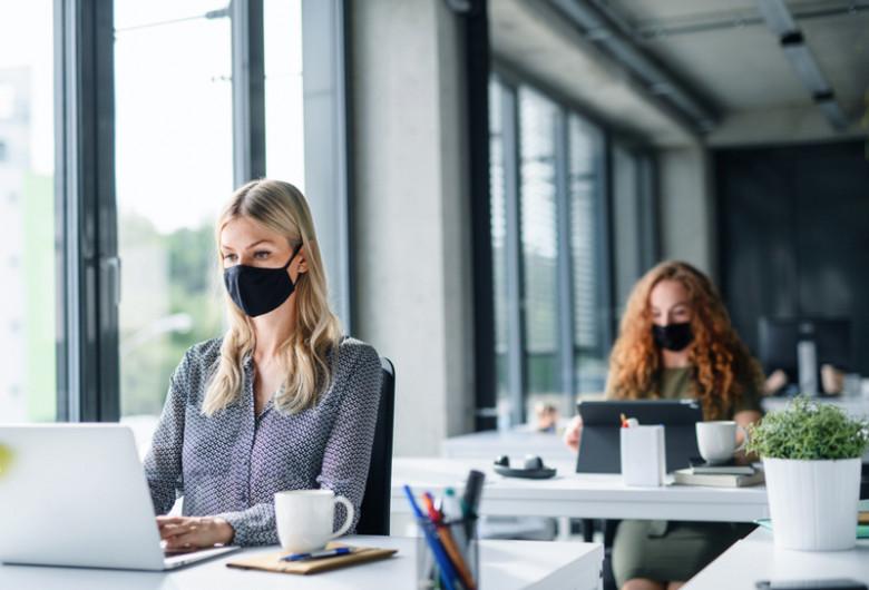 Angajați muncesc la birou, companie, mască, COVID-19, coronavirus, serviciu, calculatoare