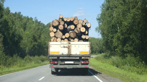 Transport de lemne, pădure, mediu, SUMAL, material lemnos, defrișări