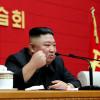 Kim Jong Un cu pumnul ridicat
