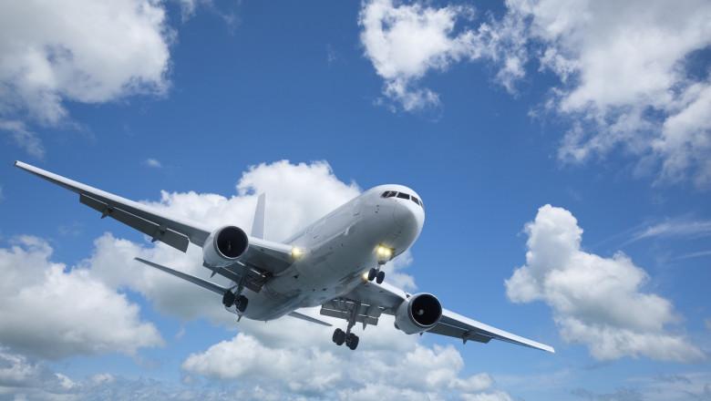 Avion în zbor