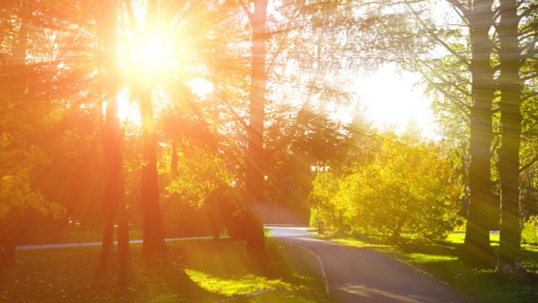 Vreme însorită, caldă, soare, vară, primăvară, parc, relaxare, natură