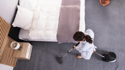 Menajeră, îngrijitoare, servitoare, femeie la curățenie, bonă, face curat prin casă, dă cu aspiratorul, activități casnice