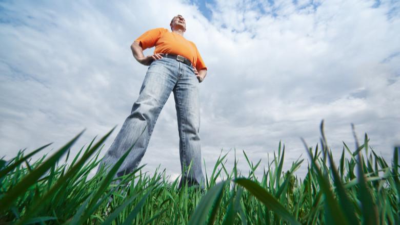 Bărbat înalt în iarbă, înălțime, dimensiune, postură dreaptă, încredere