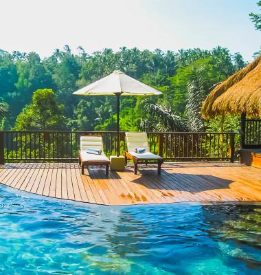 hotel de lux jungla