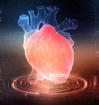zona-de-risc-inima