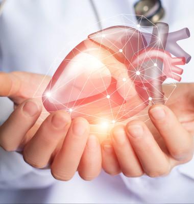 zona-de-risc-inima-7-lucruri-interesante-despre-inima
