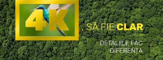 SaFieClar_FB_1200x1200
