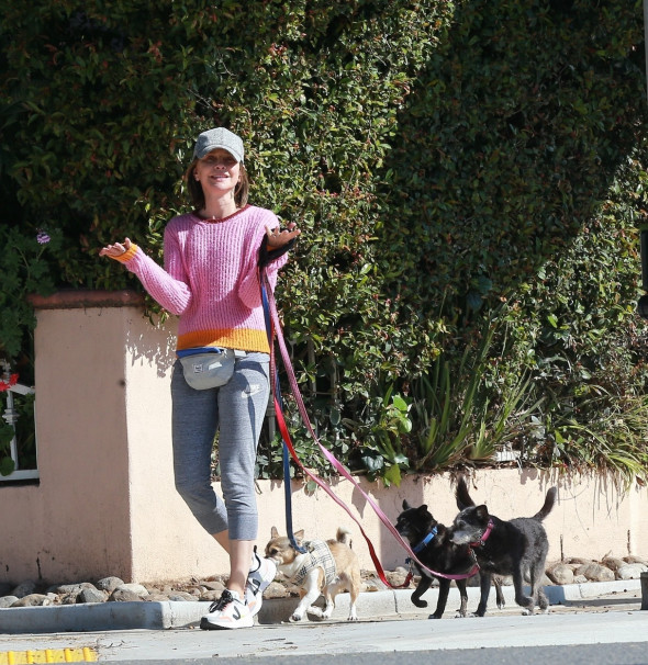 *EXCLUSIVE* Calista Flockhart can almost pass as a Professional Dog Walker