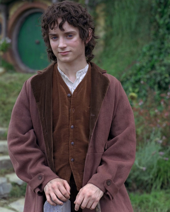 The Lord of the Rings: The Fellowship of the Ring (2001) - filmstill