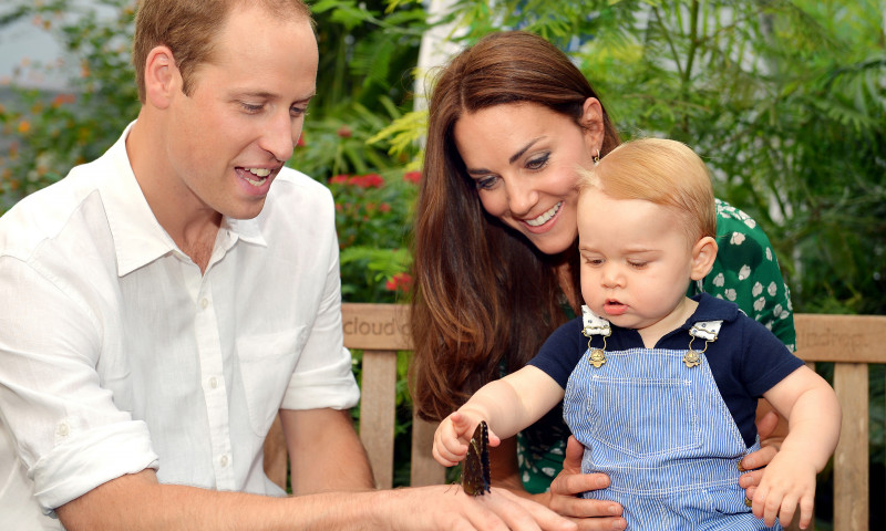 printul william kate middleton printul louis