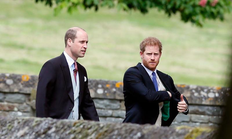 Prințul Harry și William