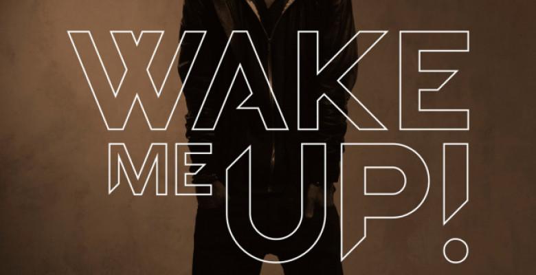 wake-me-up-feat-aloe-blacc