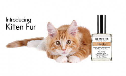 parfum-blana-pisica