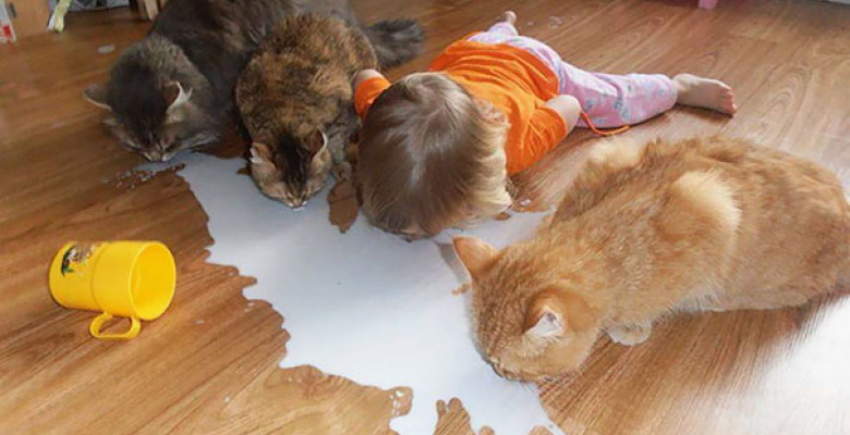 funny-kids-babysitting-pets-4-58f71dec2f53e__605