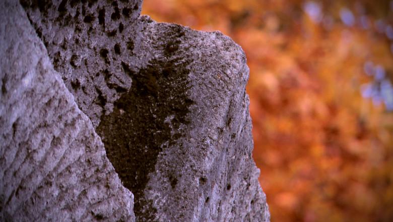 digi-world-piatra-buzaului