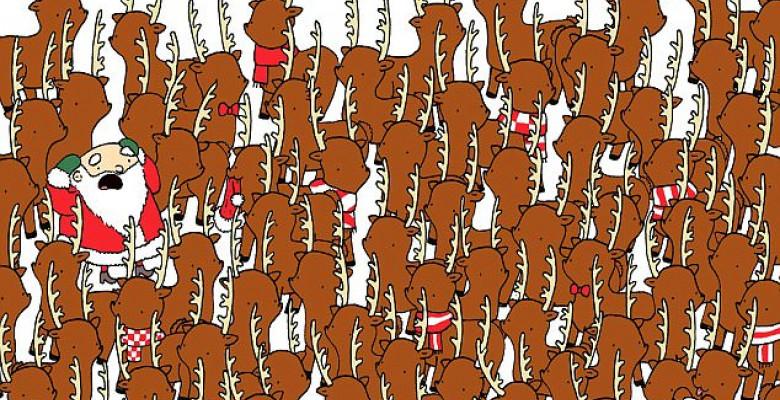 puzzle-ursul-printre-reni-header