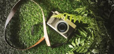 """Prima planta care a reusit sa-si faca un """"selfie"""". Cum a fost posibil..."""