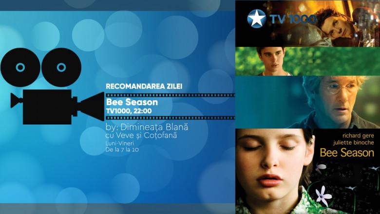 VIZUAL TV 1000 Bee Season