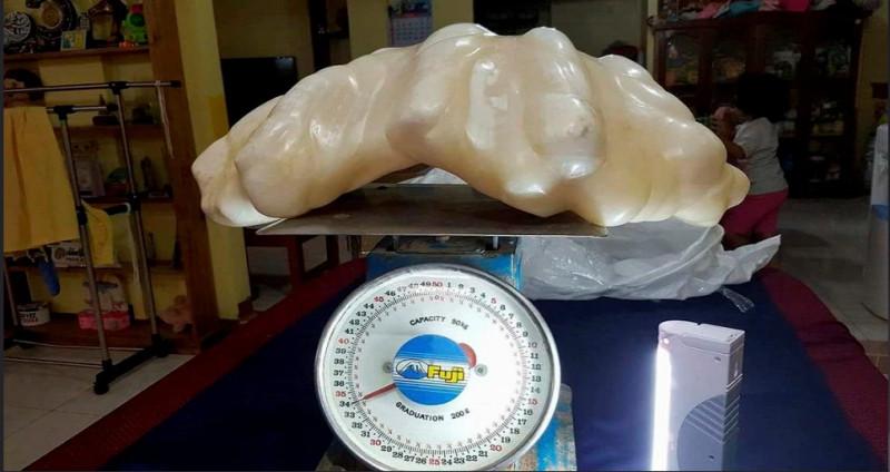 perla gigany