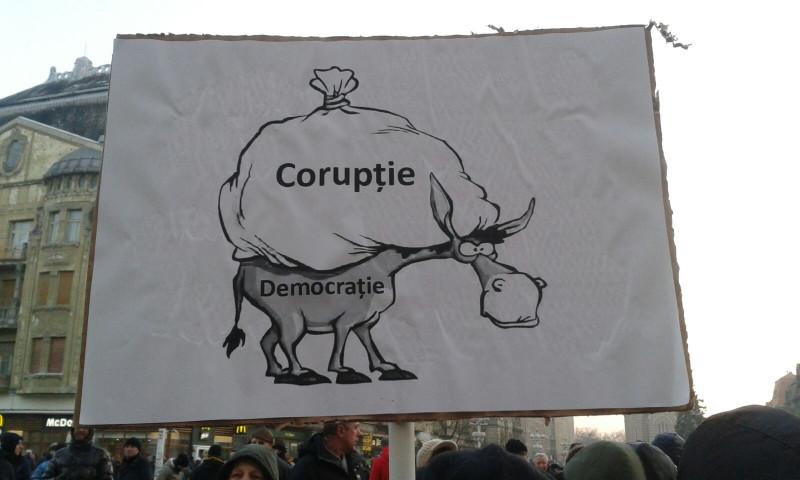 Pancarte protest Timisoara 4 290117
