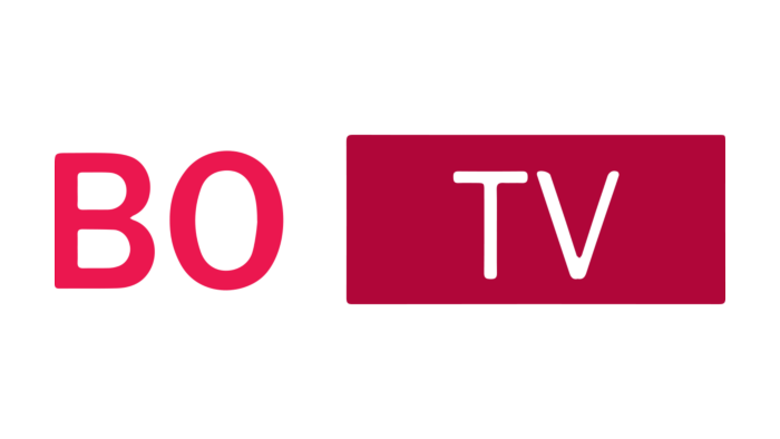Bollywood TV