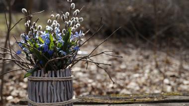Obiceiuri de altădată de Florii. Pentru belșug, sănătate și iubire