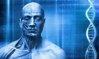Stiai ca jumatate din corpul tau nu e format din celule umane? Cum poate fi afectata industria medicala de aceasta descoperire