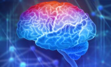 """Cercetatorii au creat """"mini-creieri"""" umani artificiali. Ce vor sa descopere"""