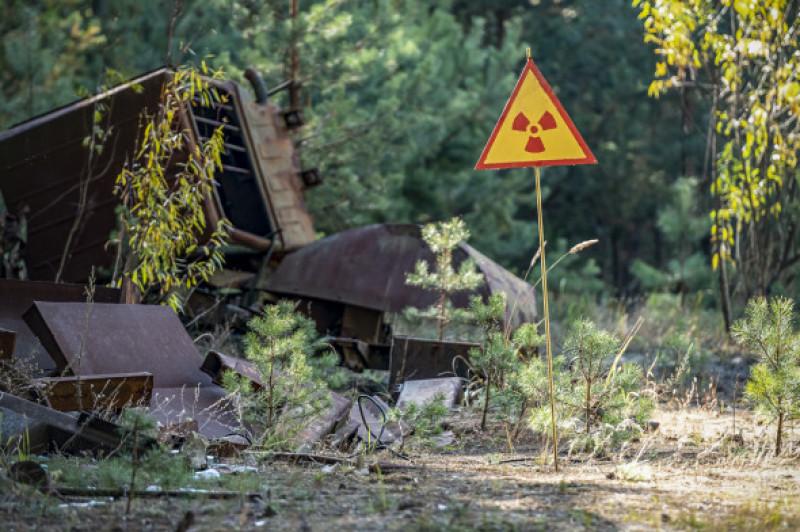 semn interzis cernobil padurea rosie
