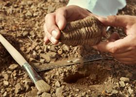 Pentru prima dată, experții au găsit urme de cancer și în fosilele de dinozauri. Cât de veche e mostra
