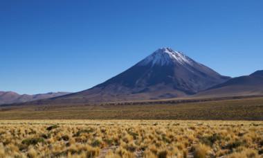 Record mondial: ce mamifer minuscul a fost gasit pe cel mai inalt vulcan activ din lume, la altitudinea impresionanta de 6739 m