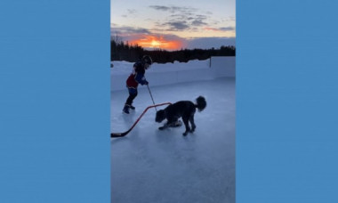 Ce se întâmplă când lași un puști și un câine pe un patinoar. Imaginile inedite fac furori pe internet