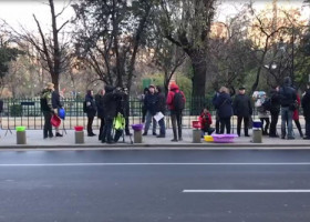 VIDEO: Protest cu ligheane în fața Primăriei Capitalei