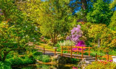 Cele mai frumoase gradini botanice din lume. Atrag milioane de turisti