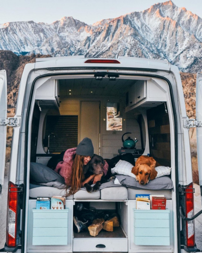 EXCLUSIVE: 'I Was Just So Tired All The Time': Woman, 26, Who Used To Work '70 Hours Per Week' Quits To Live Life On The Open Road In A Van With Her Two Dogs Spending Just $14,000 In Total