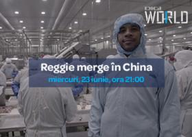 Miercuri de la 21:00, Reggie merge în China.