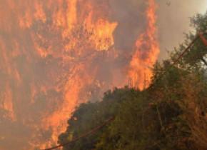 Incendiu de proporţii în Zakynthos. Flăcările se apropie de case, sute de oameni au fost evacuaţi