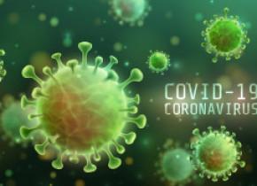 Crește numărul de cazuri COVID-19. Au fost raportate 441 de cazuri noi, în 24 de ore. Bilanțul ajunge la 5.202