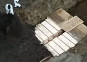 VIDEO | Imagini teribile din New York: Victimele epidemiei sunt îngropate în gropi comune
