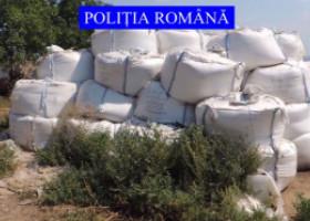 Zeci de tone din substanța care a produs mega-explozia din Beirut, depozitate ilegal la o firmă din România